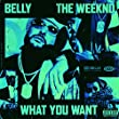 What You Want [Explicit] [feat. The Weeknd]