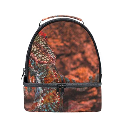 7c710a568e35 Amazon.com - HEOEH Reptile Lizard Colorful Lunch Bag Insulated Lunch ...