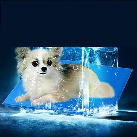 Blue Bridge Casa de Perro, Auto enfriamiento Gel Mat Dog ...