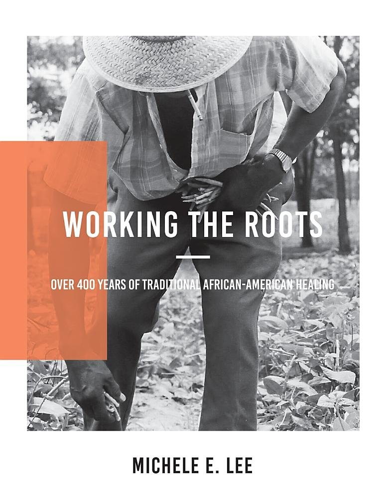 Working the Roots: Over 400 Years of Traditional African American Healing ebook