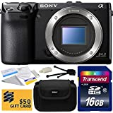 Sony NEX-7 NEX7 NEX7/B Compact 24.3 MP Mirrorless Interchangeable Lens Camera - (Body Only) with Starter Accessories Bundle Kit includes 16GB Class 10 SDHC Memory Card + Hard Shell Carrying Case + Camera Lens Cleaning Kit + Bonus for Digital Prints