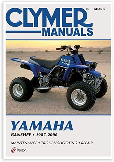 2003 Yamaha Grizzly Wiring Diagram