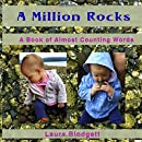A Million Rocks: A Book of Almost Counting Words