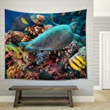 wall26 - Colorful underwater offshore rocky reef with coral and sponges and small tropical fish swimming by in a blue ocean - Fabric Wall Tapestry Home Decor - 68x80 inches