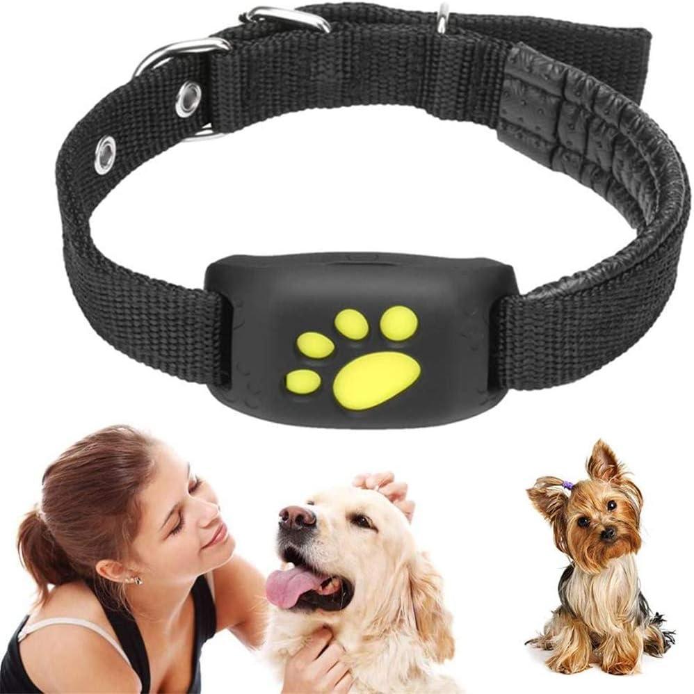 Kjdm-1 Pieza Mascotas GPS Seguimiento Inteligente Perros Collar GPS localización Monitor de Actividad función de recuperación USB Carga rastreador