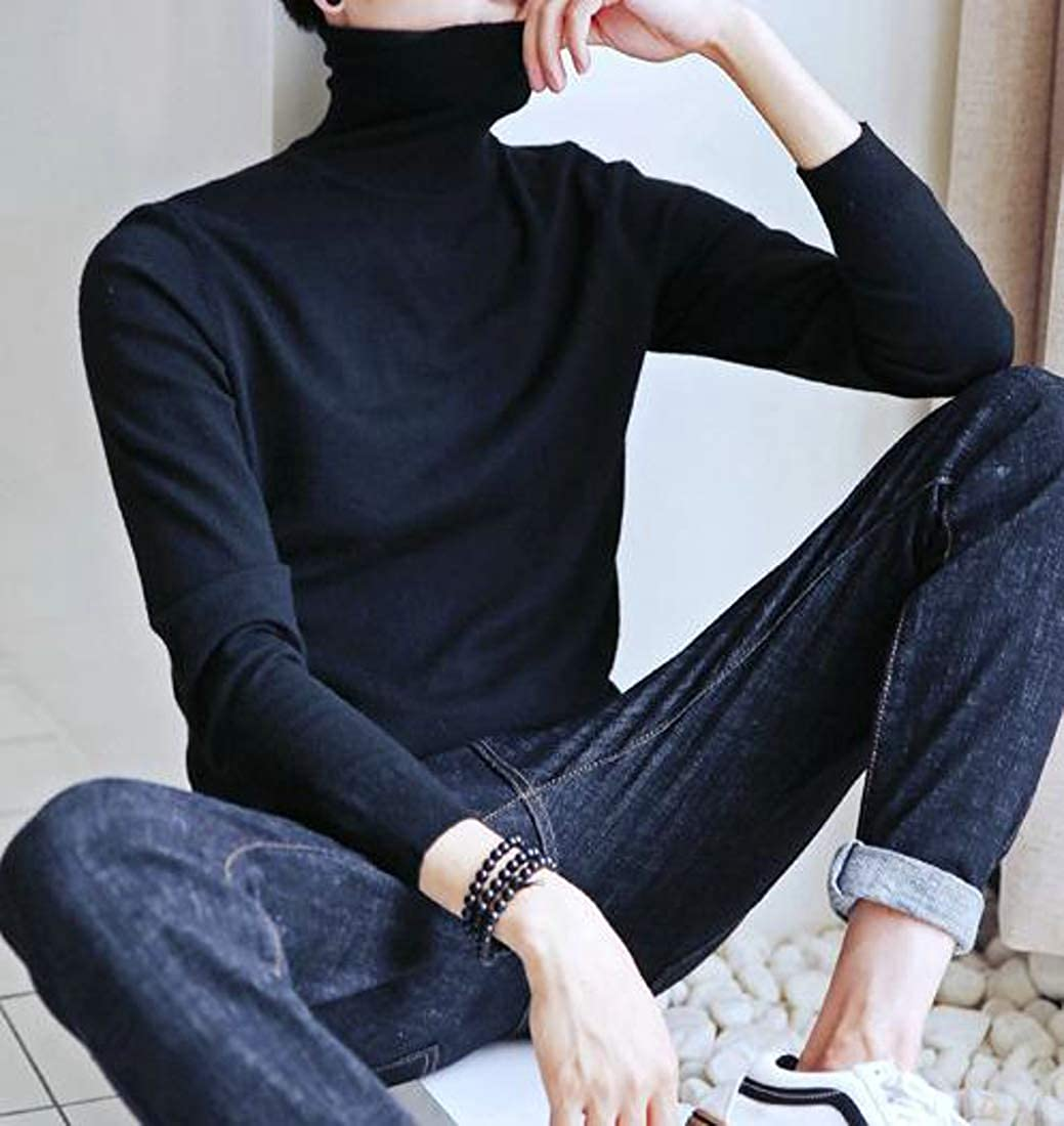 Pandapang Mens Jumper Pullover Knit Pure Color Turtle Neck Slim Sweaters