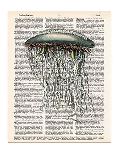 Vintage Jellyfish, Dictionary Page Art Print, 8x11 UNFRAMED