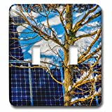 3dRose Alexis Photography - Objects - Young oak tree and a snow covered solar power panel in winter park - Light Switch Covers - double toggle switch (lsp_280888_2)