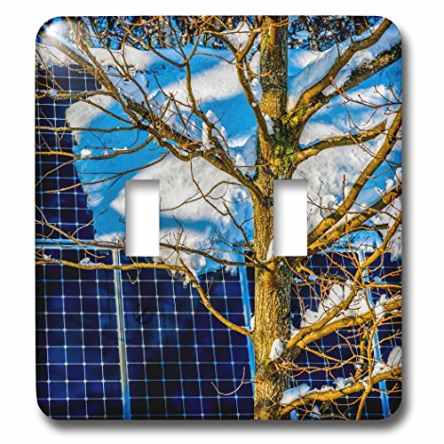 3dRose Alexis Photography - Objects - Young oak tree and a snow covered solar power panel in winter park - Light Switch Covers - double toggle switch (lsp_280888_2) by 3dRose