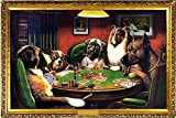 NMR 24029 Kelly Poker Decorative Poster