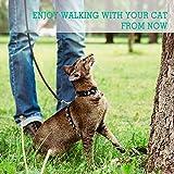 rabbitgoo Small Pet Leash, Cat Walking Long Nylon