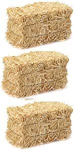 A&A Decor Fall Thanksgiving Harvest Mini Straw Hay Bale Sunni Sunflowers Natural Decorations Home Craft Display ~ Bundle of 3
