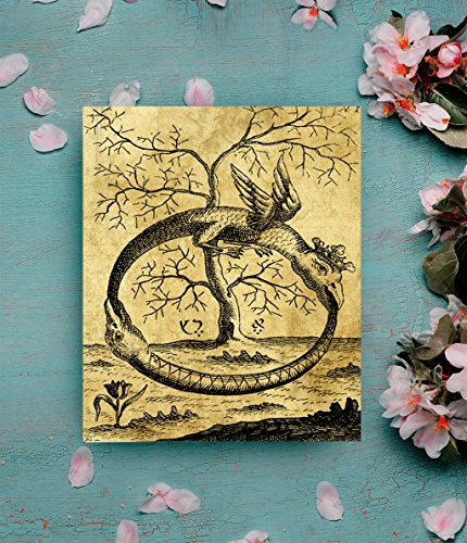 QG Art Alchemy Ouroboros Tree Of Life Canvas Poster for Wall Decoration 20 x 25cm,Stretched and Ready to (Alchemy Canvas)