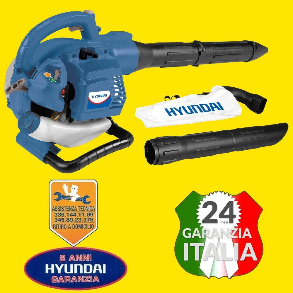 Hyundai - Soplador aspirador cx-kw250 hp 0,8: Amazon.es ...