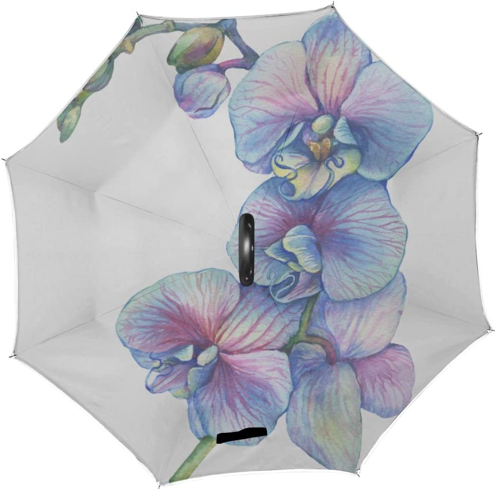 Double Layer Inverted Inverted Umbrella Is Light And Sturdy Branch Blossoming Tropical Blue Flower Orchid Reverse Umbrella And Windproof Umbrella Edg
