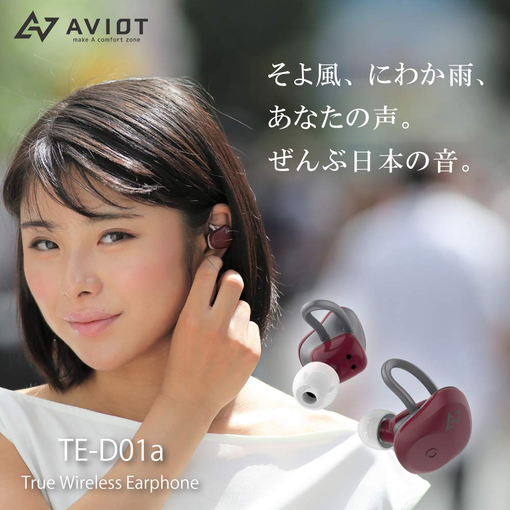 AVIOT TE-D01a