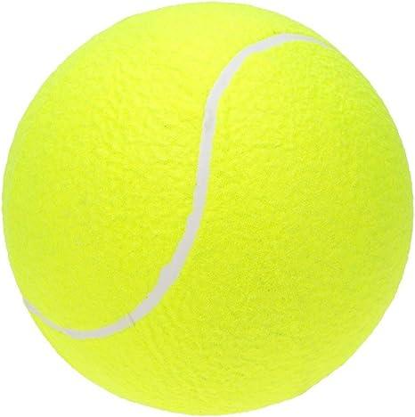 Pelota de tenis gigante: Amazon.es: Deportes y aire libre