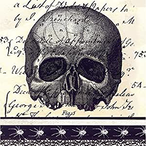 Gifted Living 4NC4824 Enchanted Halloween Skull and Spiders Paper Cocktail Napkins