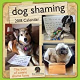 Dog Shaming 2018 Wall Calendar