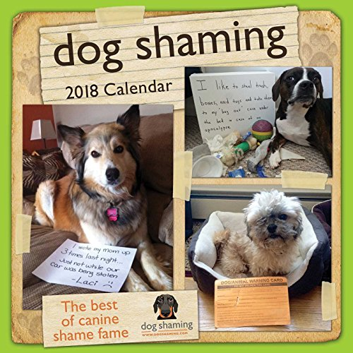 Dog Shaming 2018 Wall Calendar cover