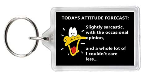 Daffy Duck Character Forcast Mood Attitude Quotes Saying ...