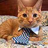 Kailian Cat Tie Adjustable Twill Cotton Tie fit for Small Dogs Cats Puppy Larger Image