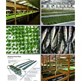 Aquaponics - Entrepreneurs Embrace Technology that Holds Key to Strengthening Local Food Systems and Increasing Food Security