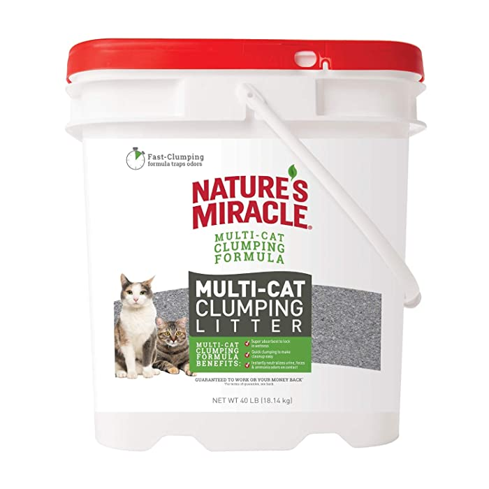 Top 10 Natures Miracle Litter 8 Lbs