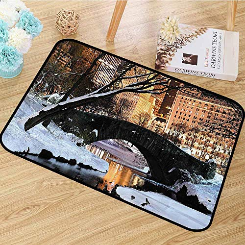 NYC Decor Collection Non Slip Rugs New York City Manhattan Central Park Lake Bridge in Freezing Winter at Dusk Panorama Dining Room Home Bedroom W67 x L78 Brown Black White]()