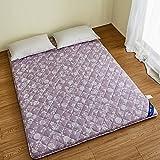 DHWJ Thickened,Tatami,Mattress Single,Double,Student dormitory,Bed cushion -B 150x200cm(59x79inch)