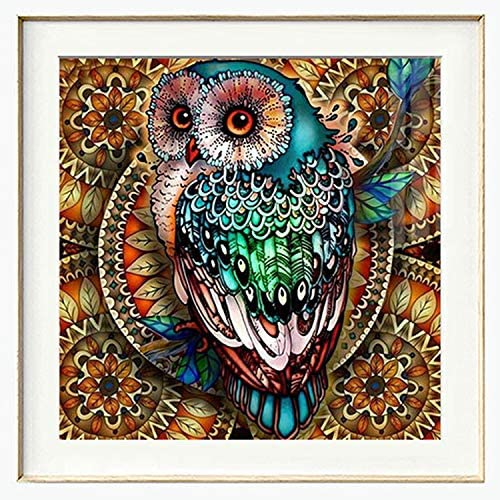 5D Square Diamond Painting Full Drill,Diamond DIY Kits,Diamond Crystal Art Owl