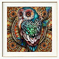Diamond Painting Kits for Adults Kids, 5D DIY Owl Diamond Art Accessories with Round Full Drill Dotz for Home Wall Decor - 11.8×11.8Inches