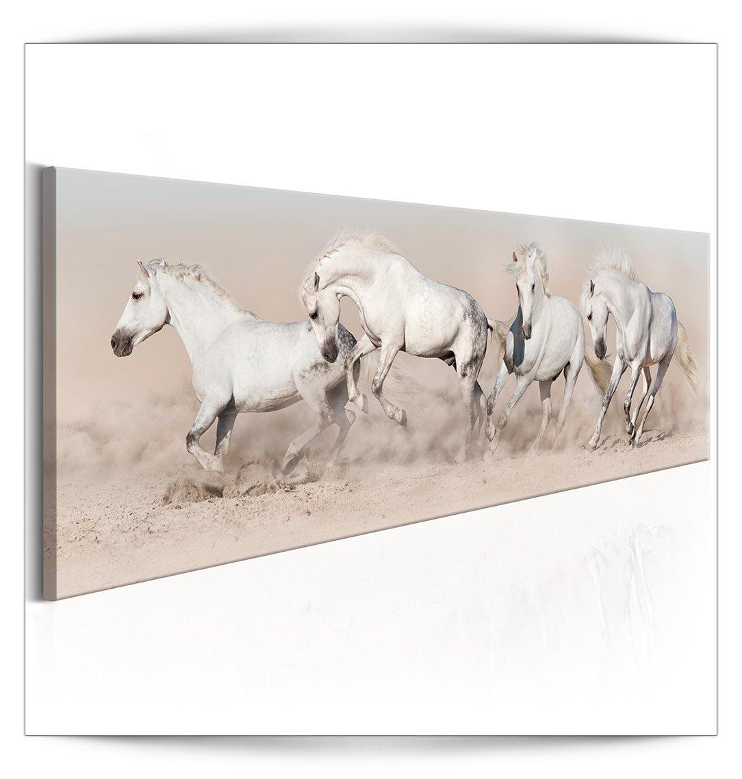 decomonkey Akustikbild Pferd 135x45 cm 1 Teilig Bilder Leinwandbilder Wandbilder XXL Schallschlucker Schallschutz Akustikdämmung Wandbild Deko leise Tier Sand weiß