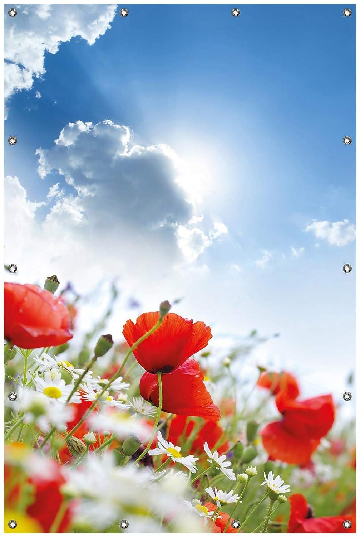 Wallario Garten-Poster Outdoor-Poster Gr/ö/ße: 61 x 91,5 cm f/ür den Au/ßeneinsatz geeignet Mohnblumen unter blauem Himmel in Premiumqualit/ät