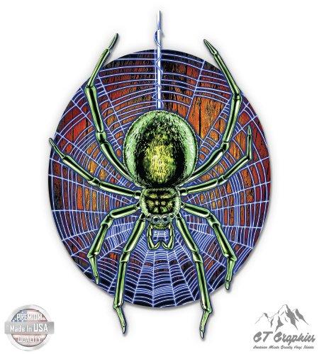 Spider Spiderweb - 5