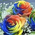 super1798 200 Pcs Multi-color Rainbow Rose Flower Seeds Garden Plants Flower Seeds