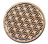 "12"" Flower of Life, Seed of Life, home decor, wooden wall art, sacred geometry art, sculpture, wall decorations, USA made"