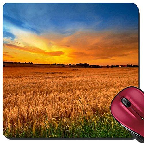Liili Suqare Mousepad 8x8 Inch Mouse Pads/Mat A photo of summer sunset extreme DOF tilt shift lens Photo (Dof Set)