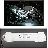 AUTOTRUMP 10cm Neon Bike Light White for Bajaj Pulsar 220