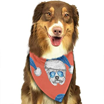 196f05556e478 Image Unavailable. Image not available for. Color  JIMMLYYA Terrier with A Blue  Santa Hat ...