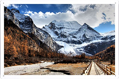 Planet Scene Poster - Bridge Wood Mountain Peak Landscape 48023 Tin Sign