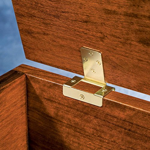 (No-Mortise Chest Hinge)