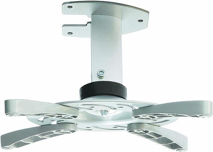 PM 101 Universal montaje en techo de soporte para todos los proyectores de inclinación y giro: Amazon.es: Electrónica