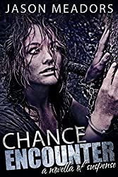 Chance Encounter: A Novella of Suspense