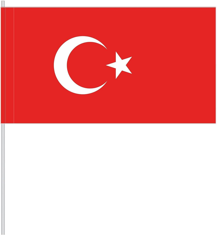 Antrada - Banderitas de papel (50 unidades), diseño de turquesa: Amazon.es: Juguetes y juegos