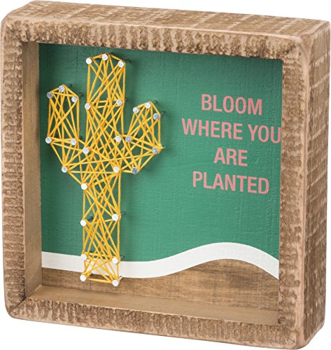 Bloom Box - Primitives by Kathy Box Sign — Bloom Where You are Planted w/String Art Cactus— 6