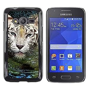 TopCaseStore / la caja del caucho duro de la cubierta de protección de la piel - Tiger Water Cute Nature Swimming Animal - Samsung Galaxy Ace 4 G313 SM-G313F