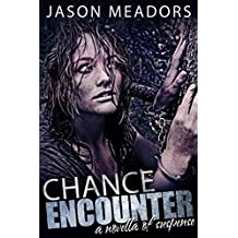 Chance Encounter: A Novella of Suspense