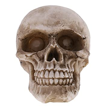 Model Resin Human Skull Small Size Halloween Skull Figurine for Kids Gift