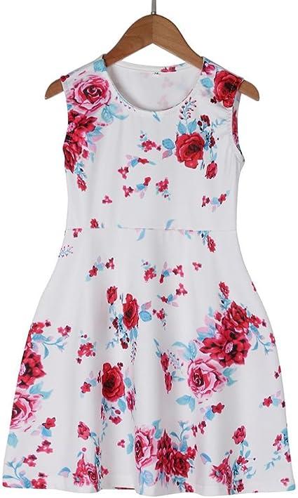 Winsummer Toddler Sleeveless Halter Lace Floral Print Princess Summer Dress Ruffle Backless Dresses for Baby Girls